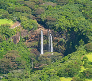 Kauai Waterfall Tour